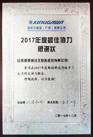 Appreciation Award-Best Teamwork of The Year, Kinugawa Rubber and Plastic (Guangzhou) Co., Ltd.