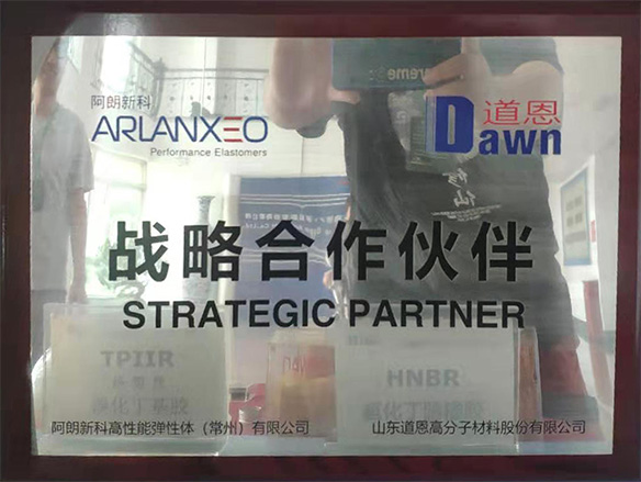Arlanxeo Strategic Partner CERTIFICATE OF DRUG MASTER FILE(DMF)